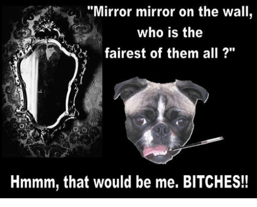 Mirror Mirror and Mandela Effect Research