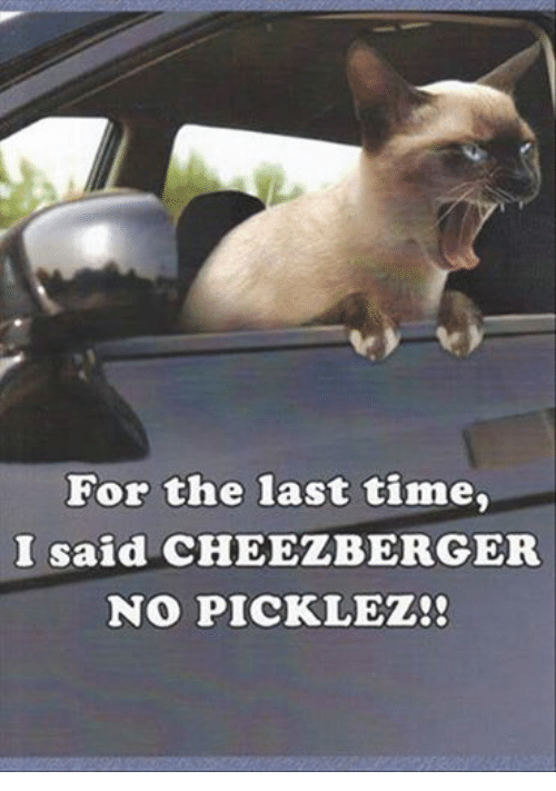 Puns  cheese  Funny Puns  Pun Pictures  Cheezburger