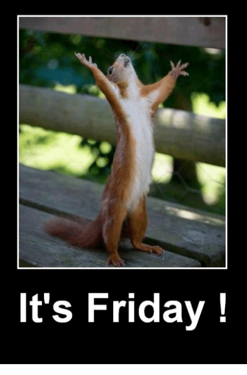 Funny its friday images