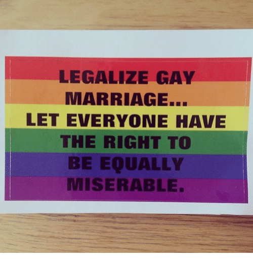 gay marriage should be legalizeda essay
