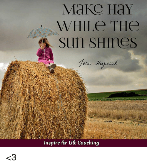 make hay while the sun shines essay