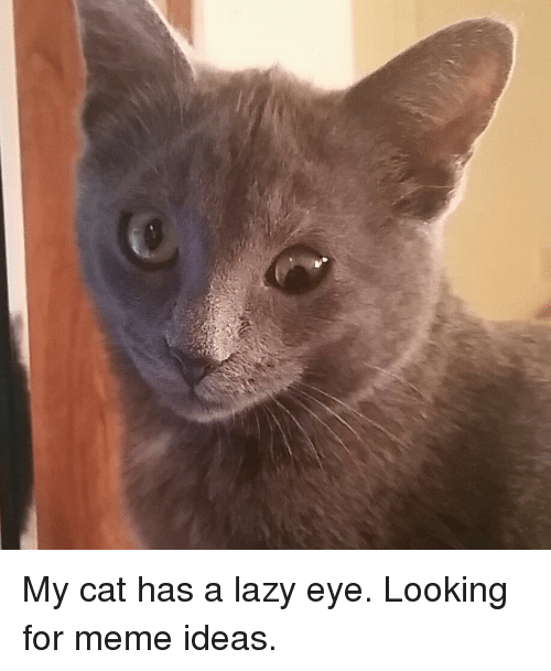 Lazy eye dating site