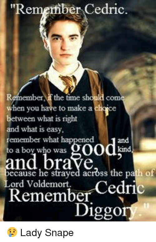 Of The Most Memorable Quotes From Harry Potter