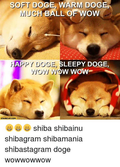 Doge love meme