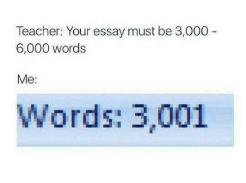 How many pages is a 3000 word essay - Svenstrup