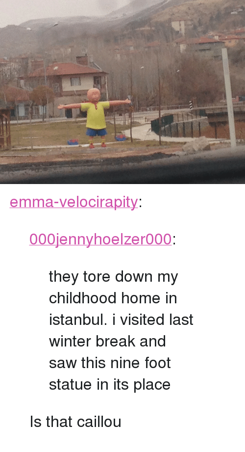 """Istanbul: <p><a class=""""tumblr_blog"""" href=""""http://emma-velocirapity.tumblr.com/post/144719956416"""" target=""""_blank"""">emma-velocirapity</a>:</p><blockquote> <p><a class=""""tumblr_blog"""" href=""""http://000jennyhoelzer000.tumblr.com/post/144716996998"""" target=""""_blank"""">000jennyhoelzer000</a>:</p> <blockquote> <p>they tore down my childhood home in istanbul. i visited last winter break and saw this nine foot statue in its place</p> </blockquote> <p>Is that caillou</p> </blockquote>"""