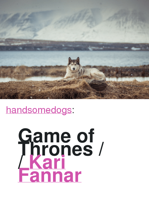 "Game of Thrones: <p><a class=""tumblr_blog"" href=""http://handsomedogs.com/post/96719382493/game-of-thrones-kari-fannar"" target=""_blank"">handsomedogs</a>:</p> <blockquote> <div class=""title""> <h1 class=""name"" data-bind=""name"">Game of Thrones / / <a class=""user_profile_link"" href=""http://500px.com/KariLarusson"" target=""_blank"">Kari Fannar</a></h1> </div> </blockquote>"