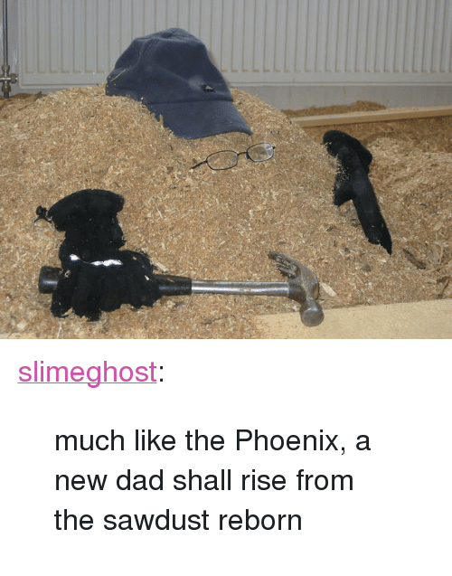 """new dad: <p><a class=""""tumblr_blog"""" href=""""http://slimeghost.tumblr.com/post/139896136220"""">slimeghost</a>:</p><blockquote> <p>much like the Phoenix, a new dad shall rise from the sawdust reborn</p> </blockquote>"""