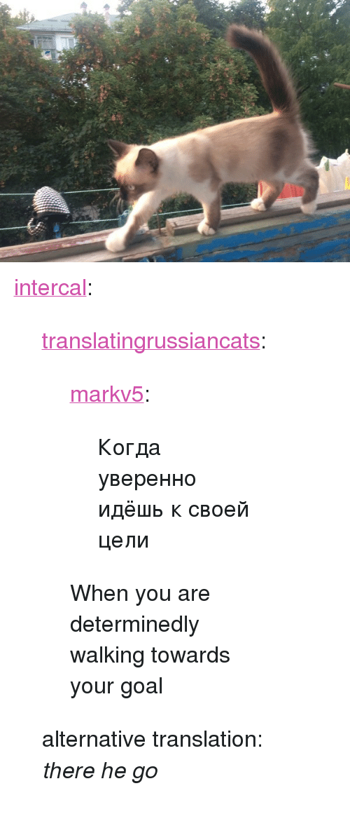 "xyz: <p><a href=""http://intercal.xyz/post/164331228735/translatingrussiancats-markv5-%D0%BA%D0%BE%D0%B3%D0%B4%D0%B0-%D1%83%D0%B2%D0%B5%D1%80%D0%B5%D0%BD%D0%BD%D0%BE"" class=""tumblr_blog"">intercal</a>:</p><blockquote> <p><a href=""https://translatingrussiancats.tumblr.com/post/164330072076/markv5-%D0%BA%D0%BE%D0%B3%D0%B4%D0%B0-%D1%83%D0%B2%D0%B5%D1%80%D0%B5%D0%BD%D0%BD%D0%BE-%D0%B8%D0%B4%D1%91%D1%88%D1%8C-%D0%BA-%D1%81%D0%B2%D0%BE%D0%B5%D0%B9-%D1%86%D0%B5%D0%BB%D0%B8-when"" class=""tumblr_blog"">translatingrussiancats</a>:</p> <blockquote> <p><a href=""https://markv5.tumblr.com/post/164330033380/%D0%BA%D0%BE%D0%B3%D0%B4%D0%B0-%D1%83%D0%B2%D0%B5%D1%80%D0%B5%D0%BD%D0%BD%D0%BE-%D0%B8%D0%B4%D1%91%D1%88%D1%8C-%D0%BA-%D1%81%D0%B2%D0%BE%D0%B5%D0%B9-%D1%86%D0%B5%D0%BB%D0%B8"" class=""tumblr_blog"">markv5</a>:</p>  <blockquote><p>Когда уверенно идёшь к своей цели</p></blockquote>  <p>When you are determinedly walking towards your goal</p> </blockquote> <p>alternative translation: <i>there he go</i></p> </blockquote>"