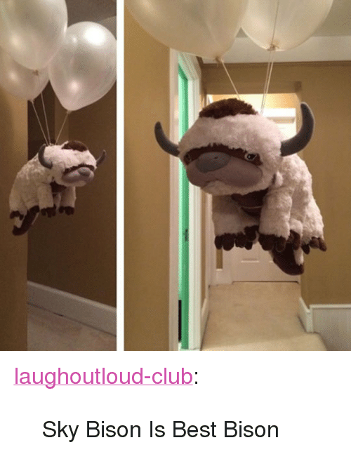 """bison: <p><a href=""""http://laughoutloud-club.tumblr.com/post/173285629757/sky-bison-is-best-bison"""" class=""""tumblr_blog"""">laughoutloud-club</a>:</p>  <blockquote><p>Sky Bison Is Best Bison</p></blockquote>"""