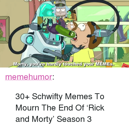 """Schwifty: <p><a href=""""http://memehumor.net/post/165987166326/30-schwifty-memes-to-mourn-the-end-of-rick-and"""" class=""""tumblr_blog"""">memehumor</a>:</p>  <blockquote><p>30+ Schwifty Memes To Mourn The End Of 'Rick and Morty' Season 3</p></blockquote>"""