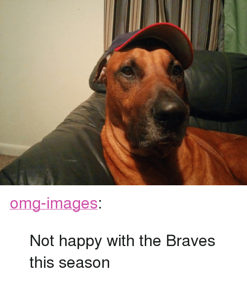 "Braves: <p><a href=""https://omg-images.tumblr.com/post/166545699312/not-happy-with-the-braves-this-season"" class=""tumblr_blog"">omg-images</a>:</p>  <blockquote><p>Not happy with the Braves this season</p></blockquote>"