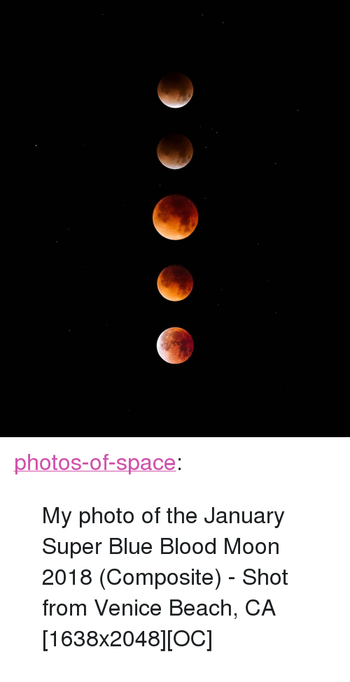 "blue blood: <p><a href=""https://photos-of-space.tumblr.com/post/170362271334/my-photo-of-the-january-super-blue-blood-moon-2018"" class=""tumblr_blog"">photos-of-space</a>:</p>  <blockquote><p>My photo of the January Super Blue Blood Moon 2018 (Composite) - Shot from Venice Beach, CA [1638x2048][OC]</p></blockquote>"