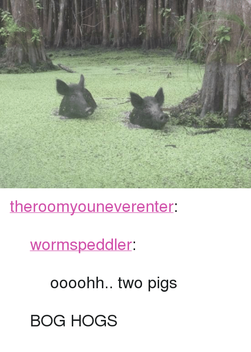 """hogs: <p><a href=""""https://theroomyouneverenter.tumblr.com/post/169514731509/wormspeddler-oooohh-two-pigs-bog-hogs"""" class=""""tumblr_blog"""">theroomyouneverenter</a>:</p> <blockquote> <p><a href=""""http://wormspeddler.tumblr.com/post/166068036717/oooohh-two-pigs"""" class=""""tumblr_blog"""">wormspeddler</a>:</p> <blockquote><p>oooohh.. two pigs</p></blockquote>  <p>BOG HOGS</p> </blockquote>"""