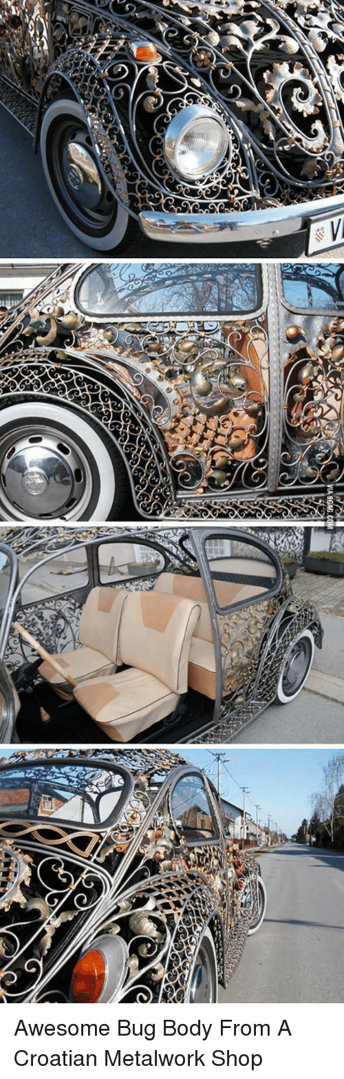 Croatian: <p>Awesome Bug Body From A Croatian Metalwork Shop</p>