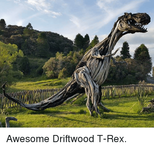 driftwood: <p>Awesome Driftwood T-Rex.</p>