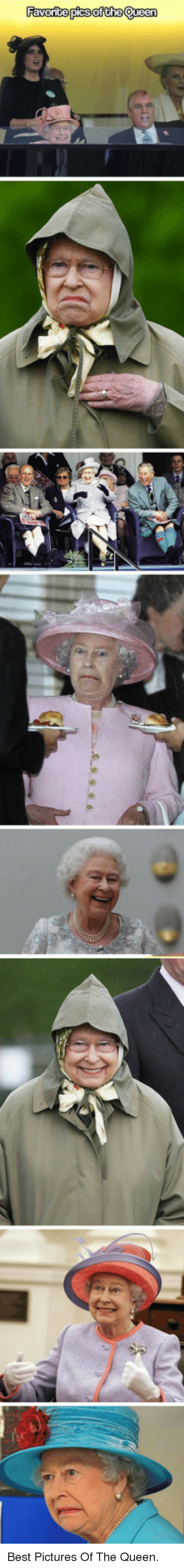 Best Pictures: <p>Best Pictures Of The Queen.</p>
