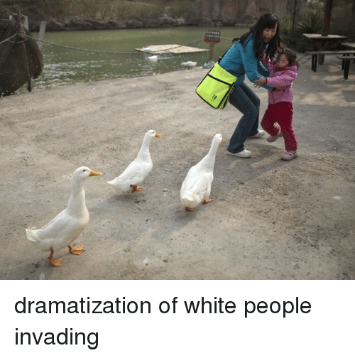 White People: <p>dramatization of white people invading</p>