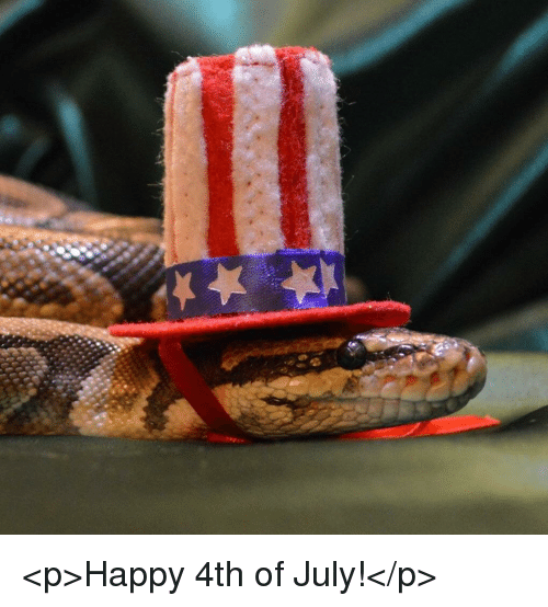 happy 4th of july: <p>Happy 4th of July!</p>