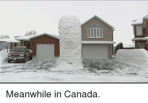 meanwhile in canada: <p>Meanwhile in Canada.</p>