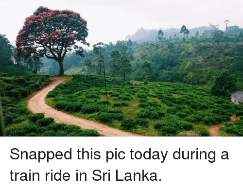 train ride: <p>Snapped this pic today during a train ride in Sri Lanka.</p>