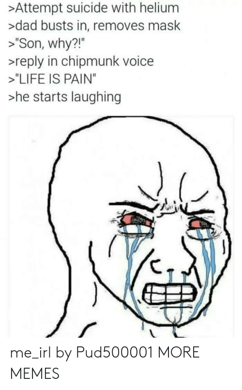 """chipmunk: >Attempt suicide with helium  >dad busts in, removes mask  > Son, why?!""""  >reply in chipmunk voice  >""""LIFE IS PAIN""""  he starts laughing  21"""" me_irl by Pud500001 MORE MEMES"""