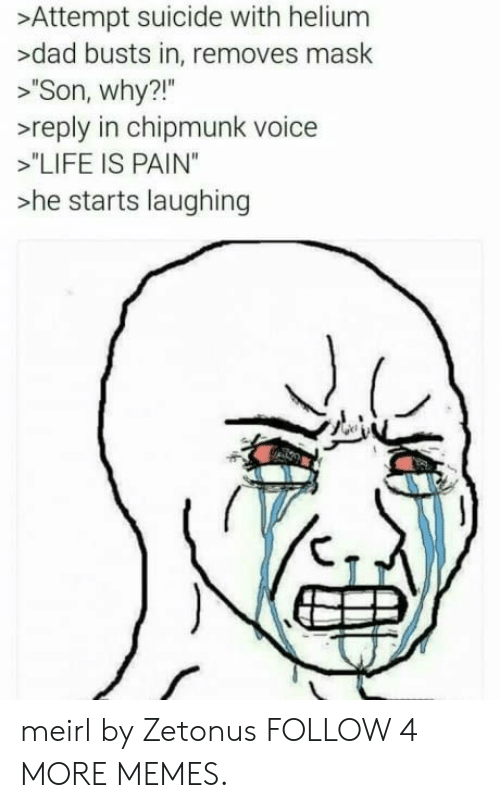 """chipmunk: >Attempt suicide with helium  >dad busts in, removes mask  """"Son, why?!""""  >reply in chipmunk voice  """"LIFE IS PAIN""""  >he starts laughing meirl by Zetonus FOLLOW 4 MORE MEMES."""