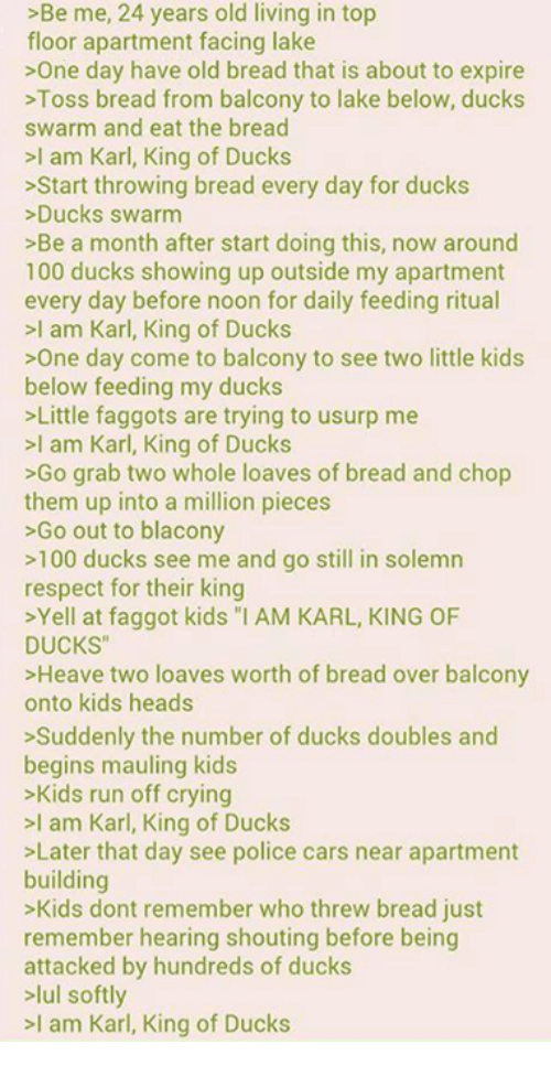 """Karl King Of Ducks: >Be me, 24 years old living in top  floor apartment facing lake  >One day have old bread that is about to expire  >Toss bread from balcony to lake below, ducks  swarm and eat the bread  >I am Karl, King of Ducks  >Start throwing bread every day for ducks  Ducks swarm  >Be a month after start doing this, now around  100 ducks showing up outside my apartment  every day before noon for daily feeding ritual  >l am Karl, King of Ducks  >One day come to balcony to see two little kids  below feeding my ducks  >Little faggots are trying to usurp me  >I am Karl, King of Ducks  >Go grab two whole loaves of bread and chop  them up into a million pieces  >Go out to blacony  >100 ducks see me and go still in solemn  respect for their king  >Yell at faggot kids """"l AM KARL, KING OF  DUCKS  >Heave two loaves worth of bread over balcony  onto kids heads  >Suddenly the number of ducks doubles and  begins mauling kids  >Kids run off crying  >I am Karl, King of Ducks  Later that day see police cars near apartment  building  >Kids dont remember who threw bread just  remember hearing shouting before being  attacked by hundreds of ducks  >lul softly  I am Karl, King of Ducks"""