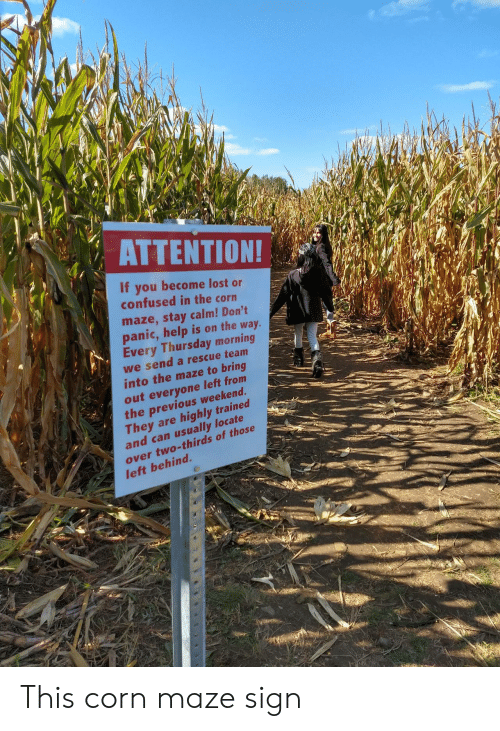 maze: ΑΤΤEΝTIΟΝ!  If you become lost or  confused in the corn  maze,stay calm! Don't  panic,help is on the way.  Every Thursday morning  we send a rescue team  into the maze to bring  out everyone left from  the previous weekend.  They are  and can usually locate  highly trained  over two-thirds of those  left behind. This corn maze sign