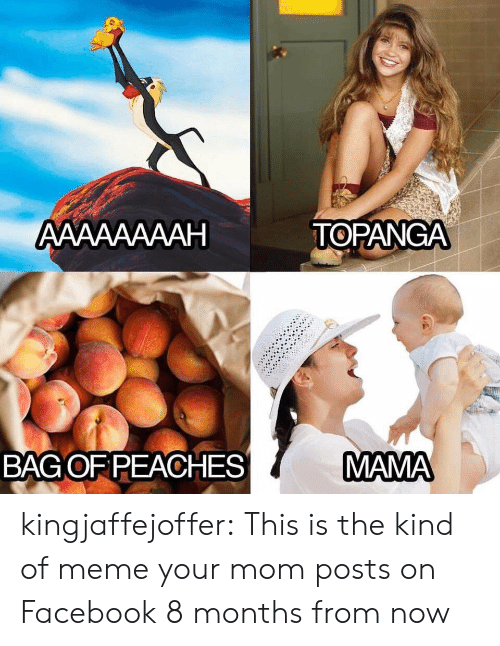 on facebook: АAААААААН  TOPANGA  MAMA  BAGOF PEACHES kingjaffejoffer: This is the kind of meme your mom posts on Facebook 8 months from now