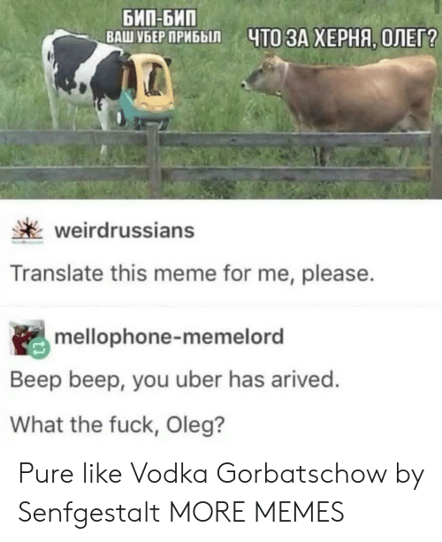 Translate: БИП-БИП  ВАШ УБЕР ПРИБЫЛ  ЧТО ЗА ХЕРНЯ, ОЛЕГ?  weirdrussians  Translate this meme for me, please.  mellophone-memelord  Beep beep, you uber has arived.  What the fuck, Oleg? Pure like Vodka Gorbatschow by Senfgestalt MORE MEMES