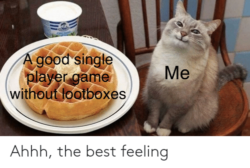 Best Feeling: снETAM  A good single  player game  without lootboxes  Me Ahhh, the best feeling