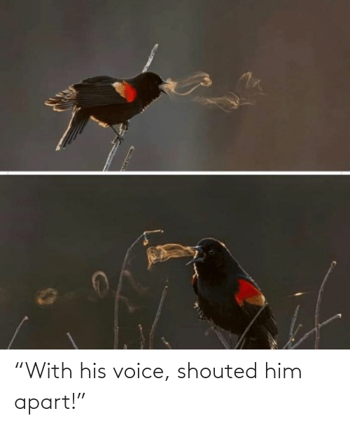 """Apart: """"With his voice, shouted him apart!"""""""