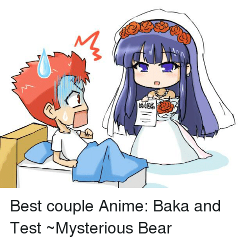 baka and test: ぐ  284 Best couple  Anime: Baka and Test  ~Mysterious Bear
