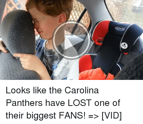 Carolina Panthers Jokes - NFL Jokes - Jokes4us.com