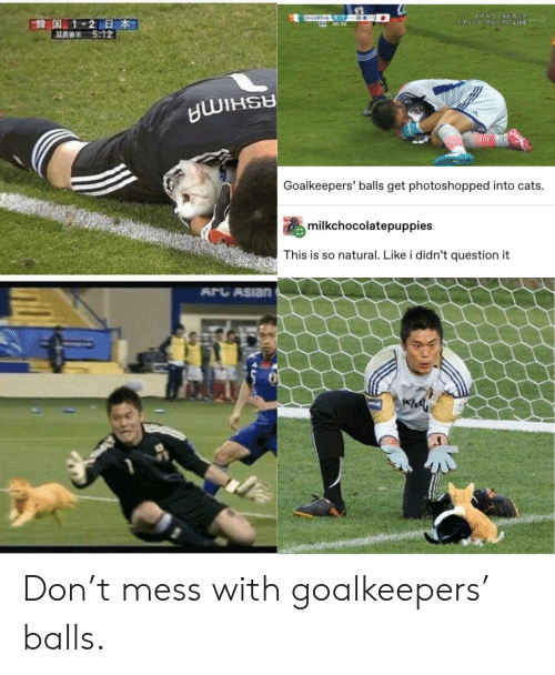 Mess With: ワールトドカップ  -3-0-1  645:25  FIFA 7-JUDE  E韓国 1-2日本  5:12  1U- 1 C LIVE  Goalkeepers' balls get photoshopped into cats.  milkchocolatepuppies  This is so natural. Like i didn't question it  ARCASIAN  PREAM Don't mess with goalkeepers' balls.
