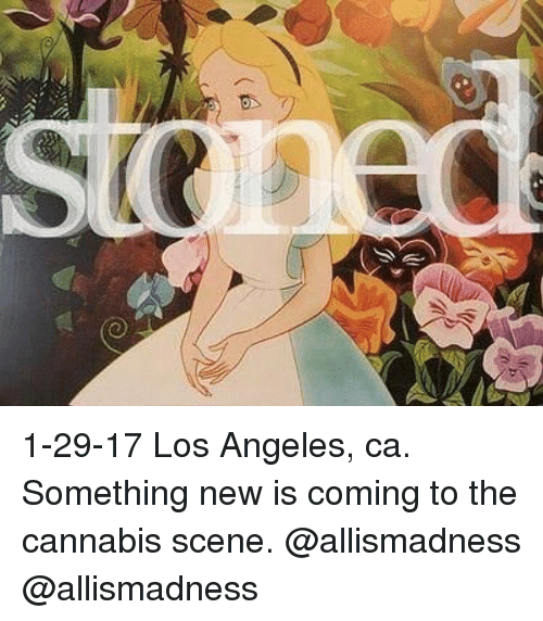 Cannabis: 山小、 1-29-17 Los Angeles, ca. Something new is coming to the cannabis scene. @allismadness @allismadness