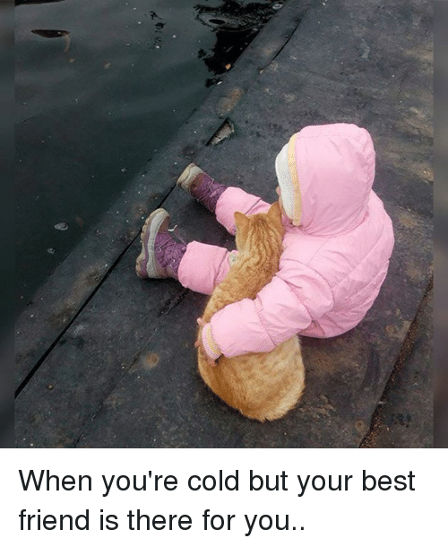 Best Friend, Friends, and Memes: 海y When you're cold but your best friend is there for you..