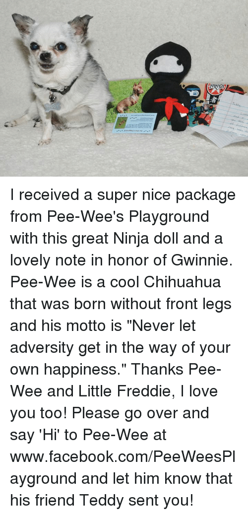 """pee wee: 者 I received a super nice package from Pee-Wee's Playground with this great Ninja doll and a lovely note in honor of Gwinnie.  Pee-Wee is a cool Chihuahua that was born without front legs and his motto is """"Never let adversity get in the way of your own happiness.""""  Thanks Pee-Wee and Little Freddie, I love you too!  Please go over and say 'Hi' to Pee-Wee at www.facebook.com/PeeWeesPlayground and let him know that his friend Teddy sent you!"""