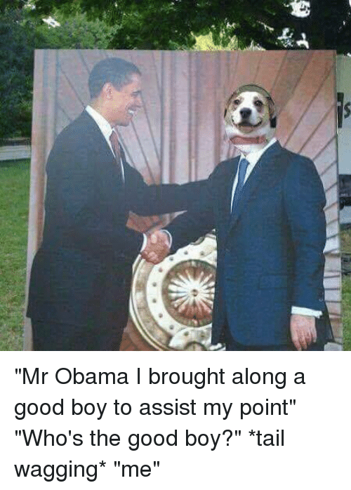 """tail wagging: 藄  岠ー广  舁 """"Mr Obama I brought along a good boy to assist my point"""" """"Who's the good boy?"""" *tail wagging* """"me"""""""