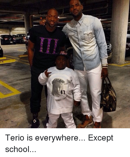 25+ Best Memes About Terio | Terio Memes