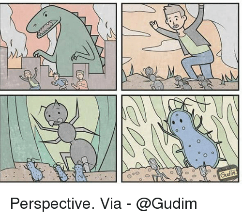 Memes, 🤖, and Via: 0  0  0 Perspective. Via - @Gudim