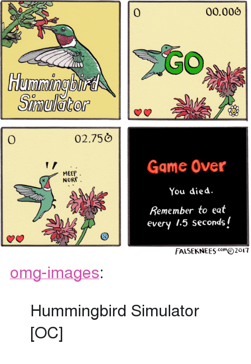 "Hummingbird: 0  00.006  Humming bitd  0  02.750  Game Over  You died  Remember to eat  every 1.5 secondsi  MEEP  NORP  FALSEKNEESm2017 <p><a href=""https://omg-images.tumblr.com/post/167242462382/hummingbird-simulator-oc"" class=""tumblr_blog"">omg-images</a>:</p>  <blockquote><p>Hummingbird Simulator [OC]</p></blockquote>"