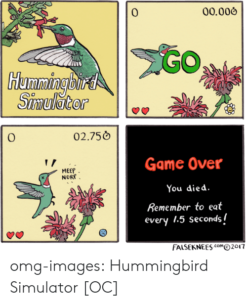 Hummingbird: 0  00.006  Humming bitd  0  02.750  Game Over  You died  Remember to eat  every 1.5 secondsi  MEEP  NORP  FALSEKNEESm2017 omg-images:  Hummingbird Simulator [OC]