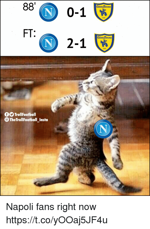 Memes, 🤖, and Now: 0-1  FT  ) 2-1  fTrolFootball  TheTrollFootball insta Napoli fans right now https://t.co/yOOaj5JF4u