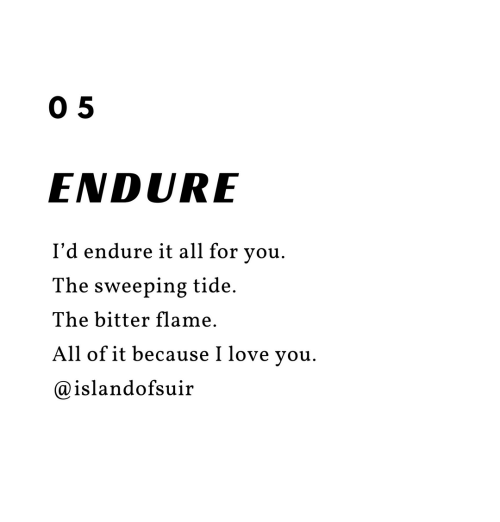 endure: 0 5  ENDURE  I'd endure it all for you.  The sweeping tide.  The bitter flame.  All of it because I love you.  @islandofsuir