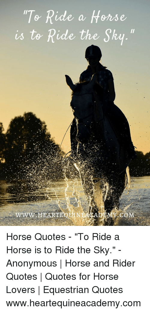 """Anonymous, Horse, and Quotes: 0  a frense  is to Ride the Sky.""""  WWW.HEARTE  MY.COM Horse Quotes - """"To Ride a Horse is to Ride the Sky."""" - Anonymous 