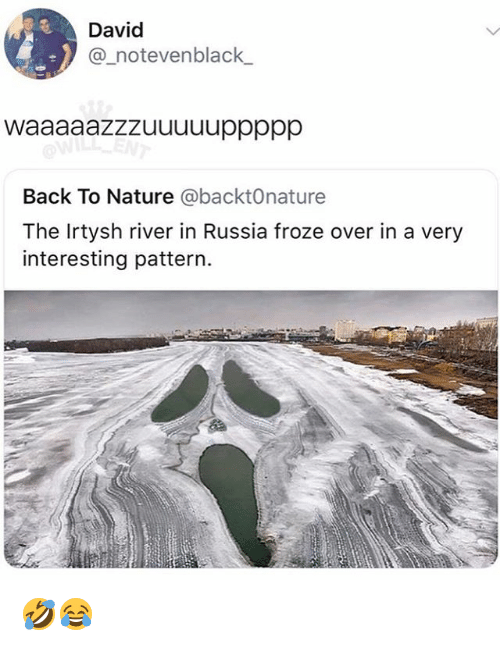 Memes, Nature, and Russia: 0  David  @_notevenblack_  Back To Nature @backtOnature  The Irtysh river in Russia froze over in a very  interesting pattern. 🤣😂