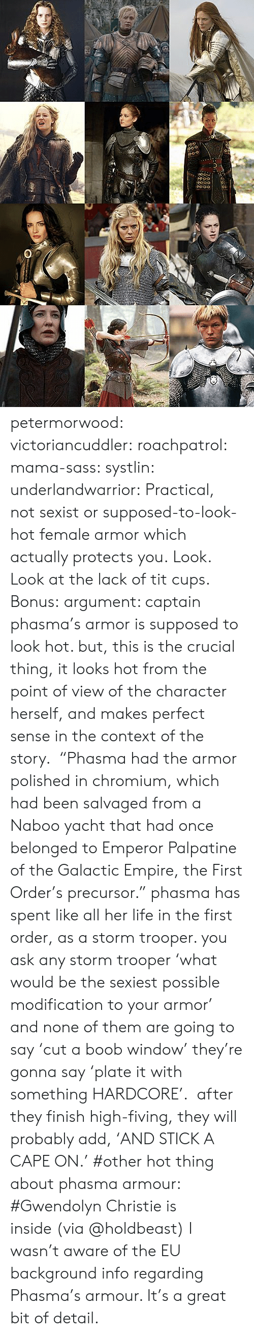 "sexist: 0-o  O0-o petermorwood:  victoriancuddler:  roachpatrol:  mama-sass:  systlin:  underlandwarrior:  Practical, not sexist or supposed-to-look-hot female armor which actually protects you.  Look.  Look at the lack of tit cups.   Bonus:  argument: captain phasma's armor is supposed to look hot. but, this is the crucial thing, it looks hot from the point of view of the character herself, and makes perfect sense in the context of the story.  ""Phasma had the armor polished in chromium, which had been salvaged from a Naboo yacht that had once belonged to Emperor Palpatine of the Galactic Empire, the First Order's precursor."" phasma has spent like all her life in the first order, as a storm trooper. you ask any storm trooper 'what would be the sexiest possible modification to your armor' and none of them are going to say 'cut a boob window' they're gonna say 'plate it with something HARDCORE'.  after they finish high-fiving, they will probably add, 'AND STICK A CAPE ON.'    #other hot thing about phasma armour: #Gwendolyn Christie is inside (via @holdbeast)  I wasn't aware of the EU background info regarding Phasma's armour. It's a great bit of detail."