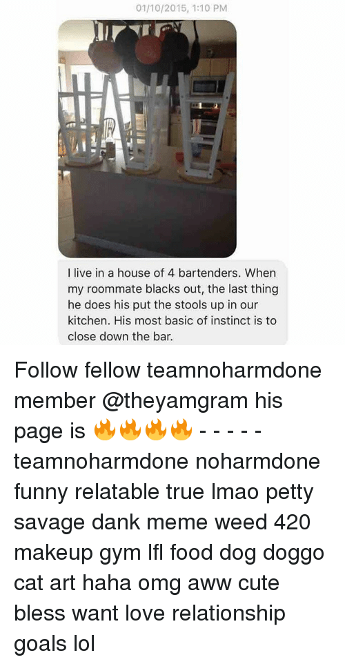 Haha Omg: 01/10/2015, 1:10 PM  I live in a house of 4 bartenders. When  my roommate blacks out, the last thing  he does his put the stools up in our  kitchen. His most basic of instinct is to  close down the bar. Follow fellow teamnoharmdone member @theyamgram his page is 🔥🔥🔥🔥 - - - - - teamnoharmdone noharmdone funny relatable true lmao petty savage dank meme weed 420 makeup gym lfl food dog doggo cat art haha omg aww cute bless want love relationship goals lol